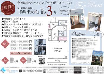賃貸マンション マイソク(東京都目黒区)